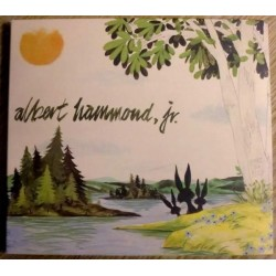 Albert Hammond Jr.: Yours To Keep (CD)