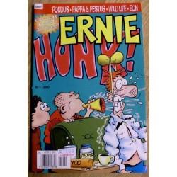 Ernie: 2000 - Nr. 1 - Godt nytt årtusen!