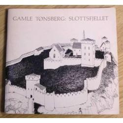 Gamle Tønsberg: Slottsfjellet