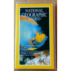 Det karabiske hav: Et paradis under vann (VHS)