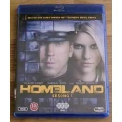 Homeland: Sesong 1 (Blu-ray)