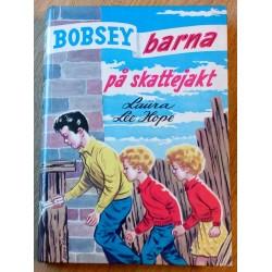 Bobsey-barna: Nr. 15 - Bobsey-barna på skattejakt