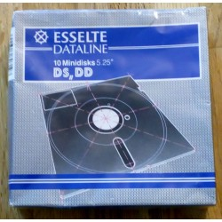 Esselte Dataline - 10 x 5.25 DS DD