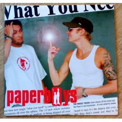 Paperboys: What You Need (CD)