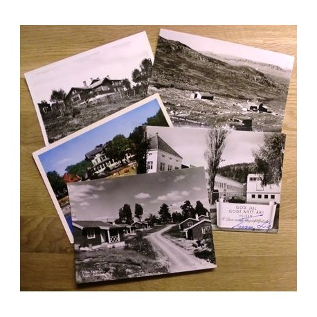 Postkort: Samling med norske kort