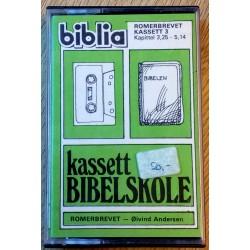 Kassett Bibelskole - Romerbrevet 3,25 - 5,14 (kassett)