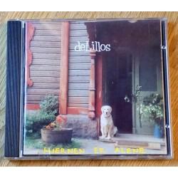 de Lillos: Hjernen er alene (CD)