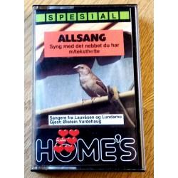Allsang - Syng med det nebbet du har (kassett)