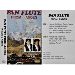 Pan Flute from Andes