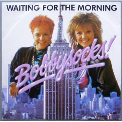 Bobbysocks!- Waiting for the Morning