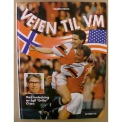 Vebjørn Rogne: Veien til VM i USA 1994