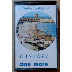 Orchestra Spettacolo: Casadei