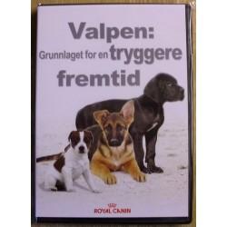 Valpen: Grunnlaget for en tryggere framtid (Royal Canin)