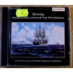 Marinemusikken Horten: Blowing