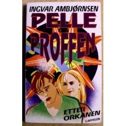 Ingvar Ambjørnsen: Pelle og Proffen: Nr. 7 - Etter orkanen