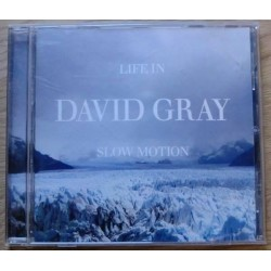 David Gray: Life In Slow Motion (CD)