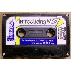 Introducing MSX